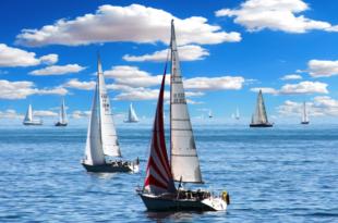 Segelschiffe 310x205 - 10 nützliche Tipps für die kommende Bootssaison