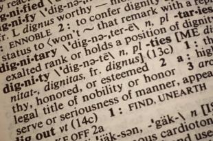 Woerterbuch 310x205 - Warum professionelle Übersetzungen unverzichtbar sind