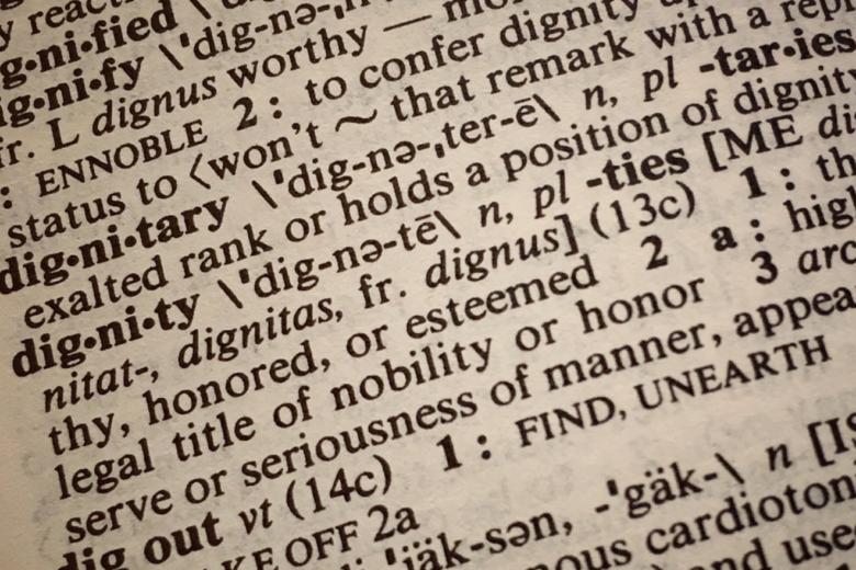 Woerterbuch - Warum professionelle Übersetzungen unverzichtbar sind