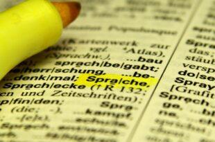 Ehegatten Nachzug Ein Drittel scheitert an Deutsch Test im Ausland 310x205 - Ehegatten-Nachzug: Ein Drittel scheitert an Deutsch-Test im Ausland