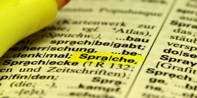 Ehegatten Nachzug Ein Drittel scheitert an Deutsch Test im Ausland 660x330 - Ehegatten-Nachzug: Ein Drittel scheitert an Deutsch-Test im Ausland