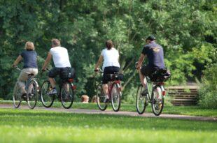 Fahrrad Boom in Deutschland ungebrochen 310x205 - Fahrrad-Boom in Deutschland ungebrochen