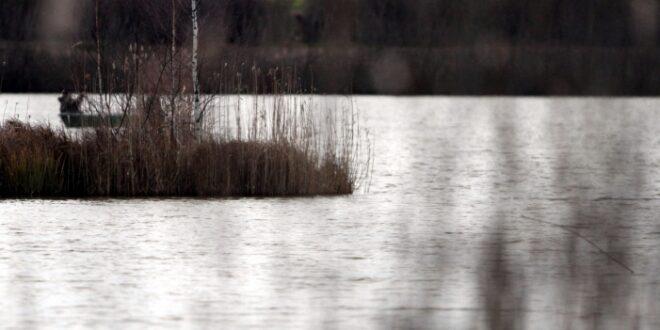 Immer weniger Aale in deutschen Binnengewässern 660x330 - Immer weniger Aale in deutschen Binnengewässern