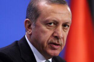 "Oezdemir Erdogans Thron wackelt 310x205 - Özdemir: Erdogans ""Thron"" wackelt"