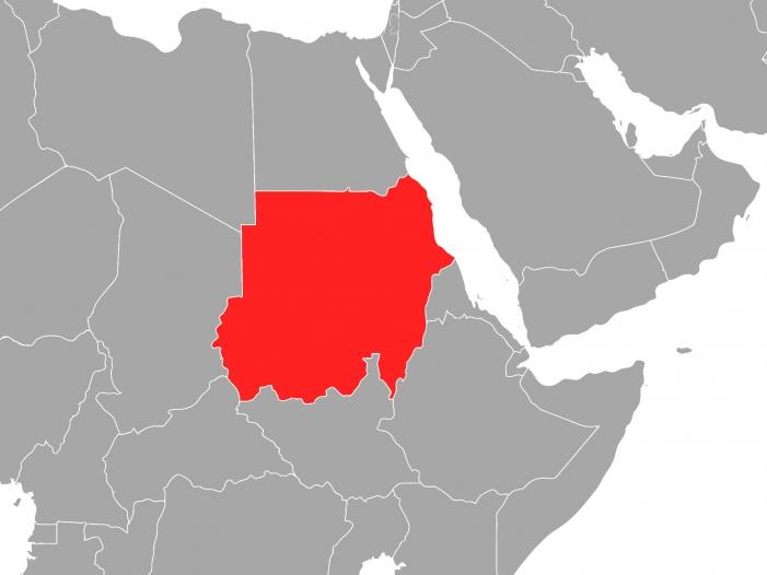 Bild von Offiziell: Sudans Staatschef al-Baschir entmachtet
