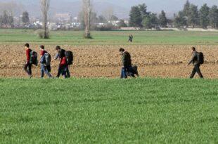 Union will Leistungen fuer illegal weiterreisende Asylbewerber kuerzen 310x205 - Union will Leistungen für illegal weiterreisende Asylbewerber kürzen