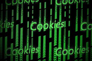 "Cookie 310x205 - EU-Cookie-Richtlinien - ""Diese Webseite verwendet Cookies"""