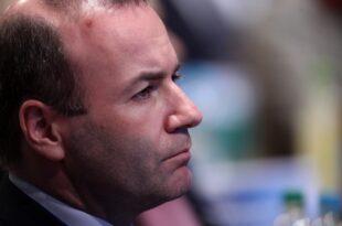 EVP Spitzenkandidat Weber will alle Industriezoelle abschaffen 310x205 - EVP-Spitzenkandidat Weber will alle Industriezölle abschaffen