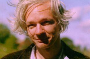 Ehemaliger Wikileaks Sprecher kritisiert Verhaftung von Assange 310x205 - Ehemaliger Wikileaks-Sprecher kritisiert Verhaftung von Assange
