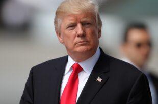 Gruene fordern von Deutscher Bank Aufklaerung in Trump Affaere 310x205 - Grüne fordern von Deutscher Bank Aufklärung in Trump-Affäre