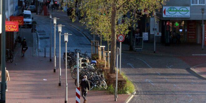 Umfrage Bundesbürger bei Haltung zu E Scootern gespalten 660x330 - Umfrage: Bundesbürger bei Haltung zu E-Scootern gespalten