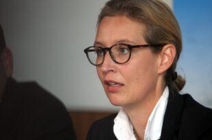 AfD Fraktionschefin Weidel bekraeftigt Kritik an Klimawandel Theorie 310x205 - AfD-Fraktionschefin Weidel bekräftigt Kritik an Klimawandel-Theorie