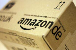 Gruene wollen Amazon Vernichtung zurueckgesandter Waren verbieten 310x205 - Grüne wollen Amazon Vernichtung zurückgesandter Waren verbieten