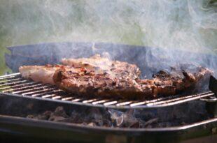 In Grills kommt haeufig Tropenholz zum Einsatz 310x205 - In Grills kommt häufig Tropenholz zum Einsatz