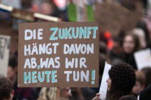 """Linke will auch von Fridays for Future profitieren 310x205 - Linke will auch von """"Fridays for Future"""" profitieren"""