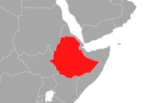 Tote bei mutmasslichem Putschversuch in Aethiopien 310x205 - Tote bei mutmaßlichem Putschversuch in Äthiopien