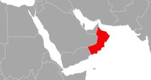 US Aussenminister Keine Gespraeche via Oman angeboten 310x165 - US-Außenminister: Keine Gespräche via Oman angeboten