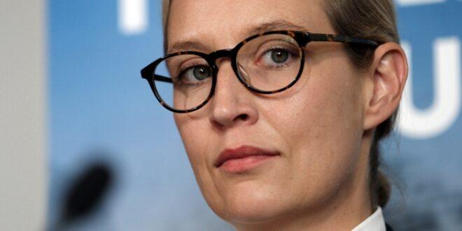"""AfD Der Fluegel und Weidel schliessen Buendnis 660x330 - AfD: """"Der Flügel"""" und Weidel schließen Bündnis"""