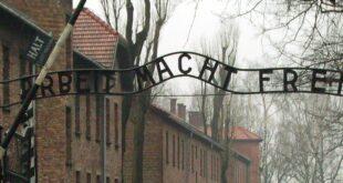 AfD gegen Pflichtbesuche in Holocaust Gedenkstaetten 310x165 - AfD gegen Pflichtbesuche in Holocaust-Gedenkstätten