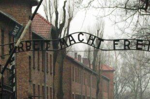 AfD gegen Pflichtbesuche in Holocaust Gedenkstaetten 310x205 - AfD gegen Pflichtbesuche in Holocaust-Gedenkstätten