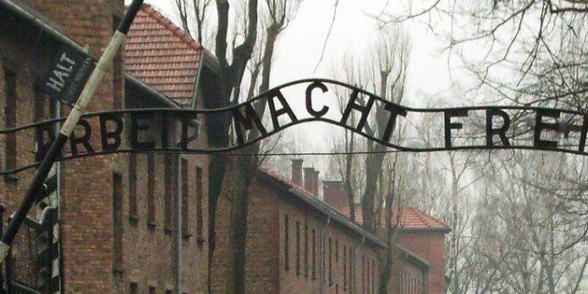 AfD gegen Pflichtbesuche in Holocaust Gedenkstaetten 660x330 - AfD gegen Pflichtbesuche in Holocaust-Gedenkstätten