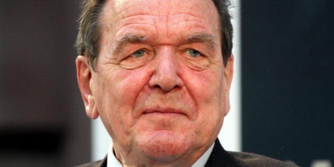 Altkanzler Schroeder kritisiert Klima Debatte 660x330 - Altkanzler Schröder kritisiert Klima-Debatte