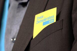 FDP will parteiuebergreifende Gespraeche fuer Klimakonsens 310x205 - FDP will parteiübergreifende Gespräche für Klimakonsens