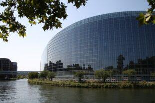 Ferber Von der Leyen muss eng mit EU Parlament zusammenarbeiten 310x205 - Ferber: Von der Leyen muss eng mit EU-Parlament zusammenarbeiten