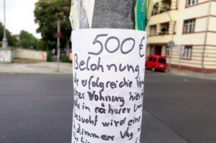 Ifo Praesident kritisiert Mietendeckel 310x205 - Ifo-Präsident kritisiert Mietendeckel