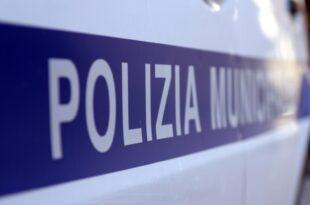 Italienischer Staatsanwalt fordert Ausweisung von Carola Rackete 310x205 - Italienischer Staatsanwalt fordert Ausweisung von Carola Rackete