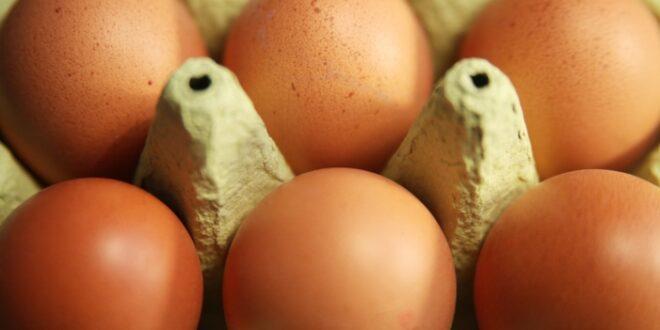 Kloeckner pocht auf EU Kennzeichnungspflicht fuer Produkte mit Eiern 660x330 - Klöckner pocht auf EU-Kennzeichnungspflicht für Produkte mit Eiern