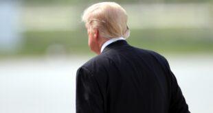 """US Regionalzeitung verteidigt Ratten Kommentar gegen Trump 310x165 - US-Regionalzeitung verteidigt """"Ratten""""-Kommentar gegen Trump"""