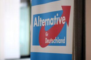 """Verfassungsschuetzer warnen vor Einfluss von Der Fluegel in AfD 310x205 - Verfassungsschützer warnen vor Einfluss von """"Der Flügel"""" in AfD"""