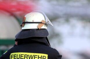 Waldbrand in Mecklenburg Vorpommern Über 350 Einsatzkräfte vor Ort 310x205 - Waldbrand in Mecklenburg-Vorpommern: Über 350 Einsatzkräfte vor Ort