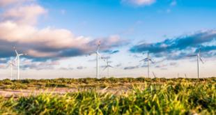 Windpark 310x165 - Windkraft - die größte Stromquelle Europas in der Krise