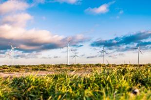 Windpark 310x205 - Windkraft - die größte Stromquelle Europas in der Krise