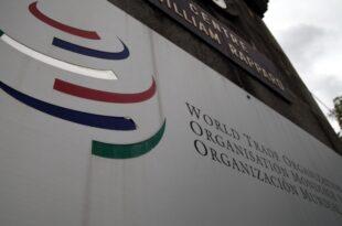 BDI verlangt Reform der WTO 310x205 - BDI verlangt Reform der WTO