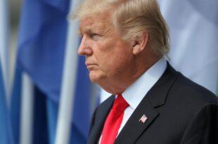 """Bartsch nennt Trump Botschafter des rechten Hasses 310x205 - Bartsch nennt Trump """"Botschafter des rechten Hasses"""""""