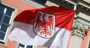 FDP Chef fordert nach Justizpanne in Brandenburg Ministerruecktritt 310x165 - FDP-Chef fordert nach Justizpanne in Brandenburg Ministerrücktritt