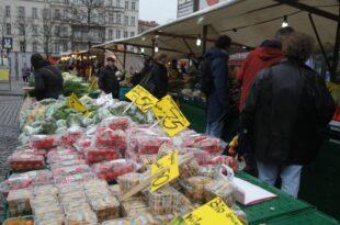 Fruchthandelsverband fuerchtet Bananen Krise 310x205 - Fruchthandelsverband fürchtet Bananen-Krise