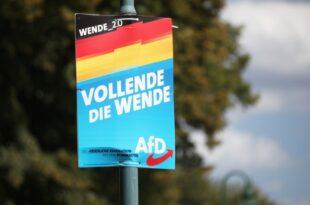 IW Chef AfD Hoehenflug waere schlecht fuer Wirtschaft im Osten 310x205 - AfD legt in Brandenburg und Sachsen zu - Aber nirgendwo vorne