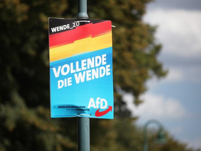 IW Chef AfD Hoehenflug waere schlecht fuer Wirtschaft im Osten - AfD legt in Brandenburg und Sachsen zu - Aber nirgendwo vorne