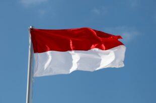 Morawiecki Polen will der Eurozone fernbleiben 310x205 - Morawiecki: Polen will der Eurozone fernbleiben
