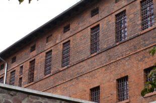 NRW will landesweit in Gefängnissen Handyspürhunde einsetzen 310x205 - NRW will landesweit in Gefängnissen Handyspürhunde einsetzen
