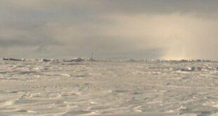Polarforscher quotPartyschiffequot haben in der Arktis nichts zu suchen 310x165 - Polarforscher: Partyschiffe haben in der Arktis nichts zu suchen
