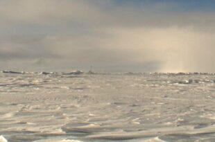 Polarforscher quotPartyschiffequot haben in der Arktis nichts zu suchen 310x205 - Polarforscher: Partyschiffe haben in der Arktis nichts zu suchen