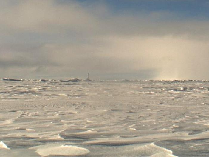 Bild von Polarforscher: Partyschiffe haben in der Arktis nichts zu suchen