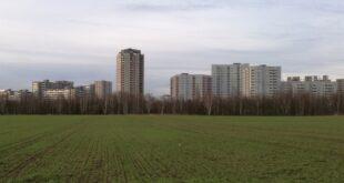 Studie Grossstadtbewohner leben auf immer weniger Quadratmetern 310x165 - Studie: Großstadtbewohner leben auf immer weniger Quadratmetern