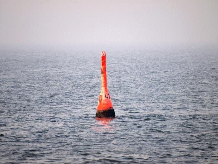 Bild von Verband Deutscher Reeder: EU soll in Straße von Hormus deeskalieren