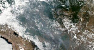 Waldbrände im Amazonas Gebiet Brasiliens Regierung unter Druck 310x165 - Waldbrände im Amazonas setzen Brasiliens Regierung unter Druck